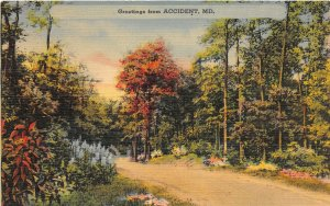 F59/ Accident Maryland Postcard Linen Greetings from Accident