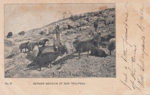 Berger Bedouin et Son Troupeau , Greece , 1905