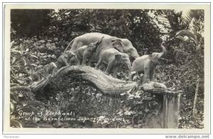 RPPC, Group of Elephants (Statues) at Bernheimer Japanese Gardens California CA