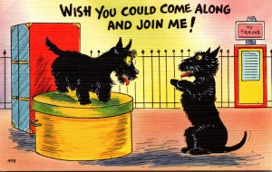 Humour Dogs Talking Wish You Could Come Along and Join Me