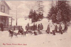 PRINCE ALBERT , Saskatchewan , Canada , PU-1910; Dog Teams