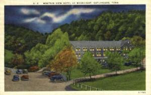 Mountain View Hotel -tn_qq_0054