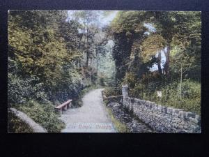 Wales COLWYN BAY The Dingle - Old Postcard