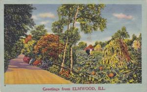 Illinois Greetings From Elmwood