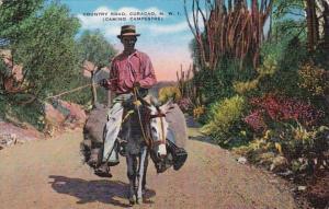 Curacao Country Road Camino Campestere Local Man Riding Donkey