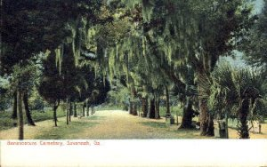 Bonaventure Cemetery - Savannah, Georgia GA