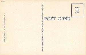 LP31 Gatlinburg  Tennessee Postcard Great Smoky Mountains National Park