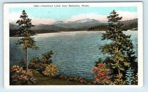 NEWMAN LAKE, WA Washington ~ Nice View of LAKE c1920s Spokane County Postcard