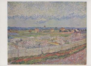 Van Gogh The Orchard Courtauld Collection Pallas Art Gallery Painting Postcard