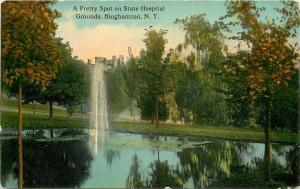 Binghamton New York~Fountain in Pond on Castle State Hospital~Trees 1910 PC