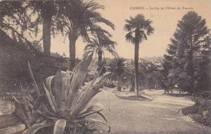 Jardin De l'Hotel Du Paradis, Cannes (Alpes Maritimes), France, 1900-1910s