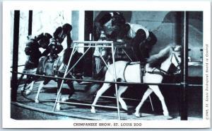 1940s ST. LOUIS ZOO Postcard CHIMPANZEE SHOW Stage View Missouri Unused
