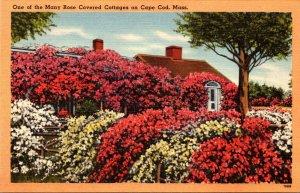 Massachusetts Cape Cod Beautiful Rose Covered Cottage