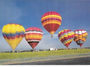 Five colorful Hot Air Balloons, Albuquerque, New Mexico,  40-60s