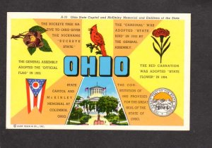 OH Ohio State Bird Cardinal Flower Red Carnation Seal Buckeye Tree Postcard