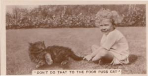 Naughty Child Dont Do That To Cat German Real Photo Cigarette Card