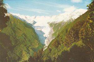 New Zealand Franz Josef Glacier South Westland