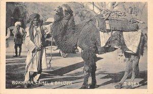 Bokhara Camel & Baluch Unused