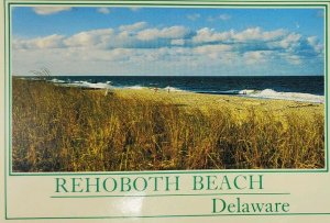 Rehoboth Beach Delaware DE Quiet Day at the Beach Vtg Postcard Grasses Waves