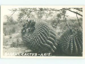 Pre-1950 rppc CACTUS State Of Arizona AZ W0530