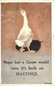 1920s Hastings UK Goose Beach Resort Advertising Salmon postcard 8116