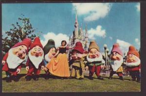 Snow White,Seven Dwarfs,Walt Disney World Postcard
