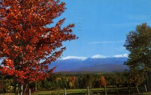 NH - The Presidential Range in Autumn from Whitefield