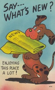 COMIC; 1930-40s; Say- - - What's New?, Dog with Newspaper in mouth