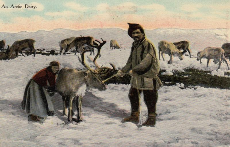 An Artic Dairy , 1913