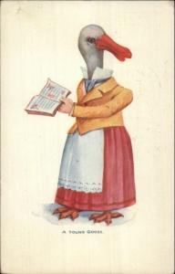 Fantasy A YOUNG GOOSE Head on Woman w/ Book c1905 Postcard jrf