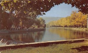 Reno Nevada~Truckee River & Falls~1950s Postcard