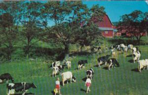 Dairy Farm Scene Greetings From Oneonta New York