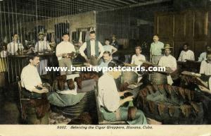 cuba, HAVANA HABANA, Selecting the Cigar Wrappers, Tobacco (1910s)
