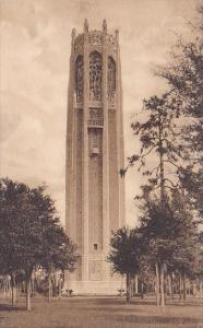 The Singing Tower From The South Lake Wales Florida  Albertype
