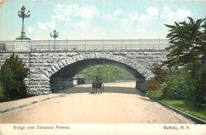 Buffalo New York~Horse & Buggy Under Bridge over Elmwood~Lampposts~1905