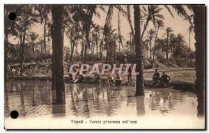 Postcard Old Tripoli Veduta Pifforesca Nell & # 39 Oasi Libya
