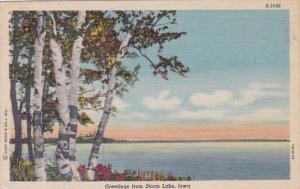 Iowa Greetings From Storm Lake 1953 Curteich