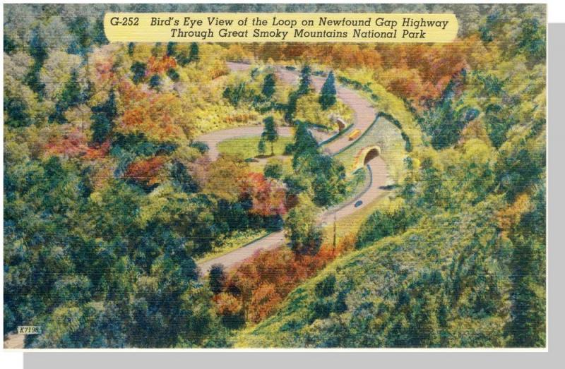 Smoky Mountains Nat'l Park,NC/TN Postcard,Newfound Gap/NMt