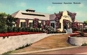 Bermuda The Government Aquarium