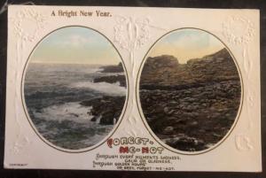 Mint Australia Picture Postcard PPC A Bright New Year