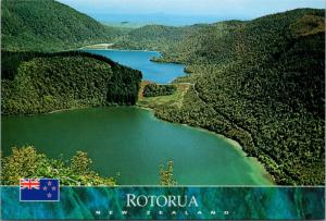 Road to Buried Village Rotorua New Zealand NZ Unused Vintage Repro Postcard D45