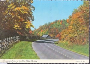 Blue Ridge Parkway NC - Fall's colored contrasts  1970s-OVERSIZED