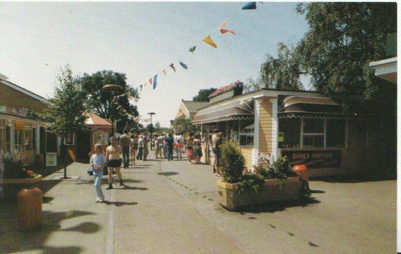 Northamptonshire Postcard - Wicksteed Park - Kettering - Northants - Ref 5522A