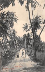 Sri Lanka Ceylon, Colombo, Native Men, pathway