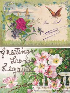 Butterfly Moth 2x German Silk Type Antique Greeting Postcard s