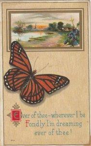 Butterfly and Sunrise scene, PU-1914