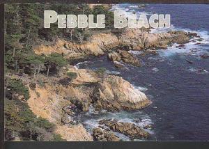 Pebble Beach CA Postcard BIN