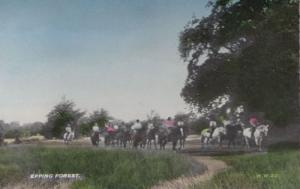 Epping Forest Riding Horses Hunting Horse Race London Old Postcard
