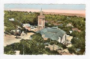 RP  Tlemcen, Algeria, La Mosquee de Sidi Haloui, PU-1961