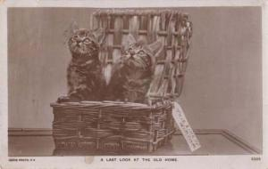 A Last Look At The Old Home Cats Removal Luggage Antique Real Photo Postcard